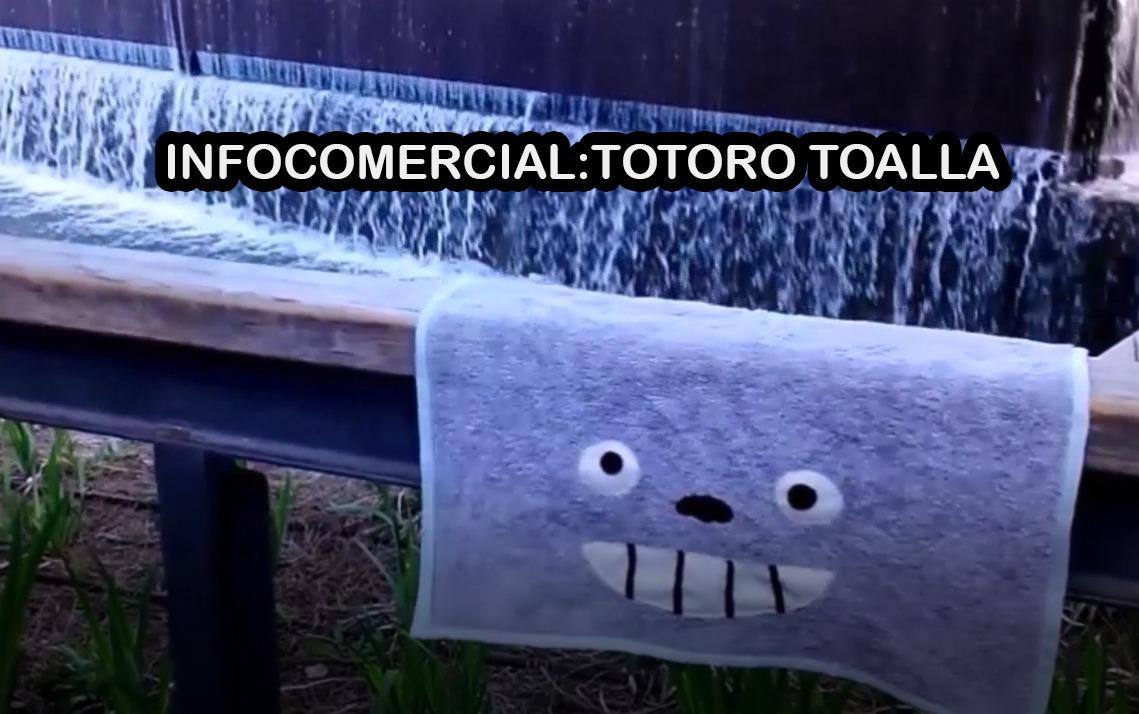 imagen promo totorotoalla
