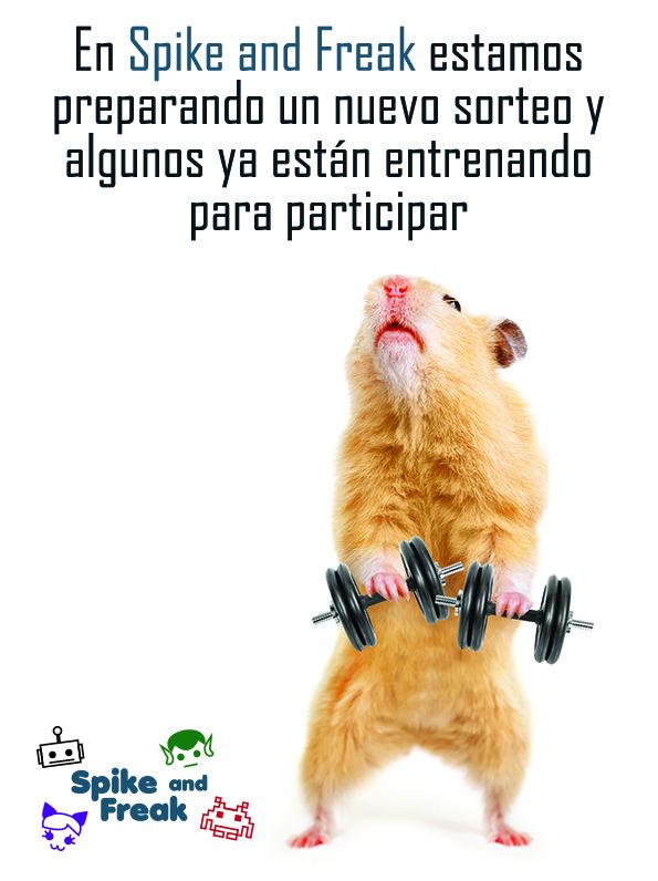 sorteo hamster haciendo pesas