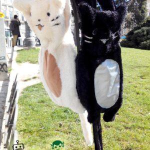 Mochilas Gatos blanco y negro